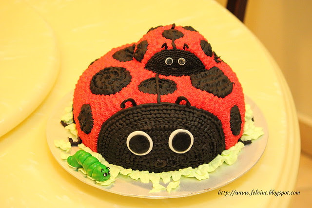 ladybird 瓢虫蛋糕