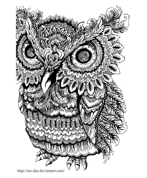 animals coloring pages  adults coloring adult owl