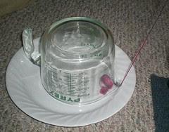 My Yarn Trap