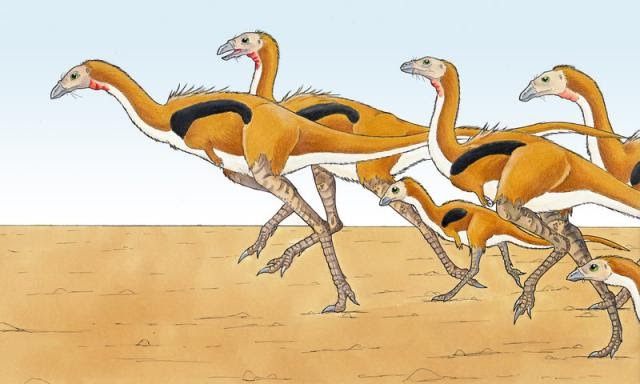 http://img.xooimage.com/files67/1/6/1/limusaurus-eurwentala-2bbf2d7.jpg