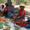 Vegetables Rot in Food Markets across Zimbabwe While Half the Population Faces Food Insecurity