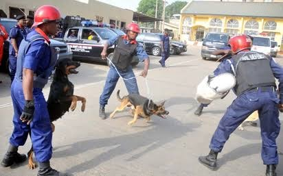 Osun Governorship Election: Sniffer Dogs Deployed By NSCDC