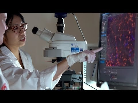 Microsoft Teams delivers healthy, real-time global collaboration for Heart Research Institute (HRI) in Australia