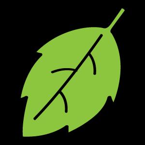 葉っぱのイラスト素材29 花植物イラスト Flode Illustration フロ
