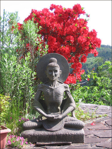 01 Buddha and Azalea