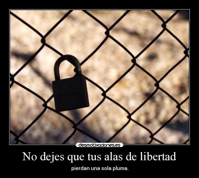 http://img.desmotivaciones.es/201101/libertad_7.jpg
