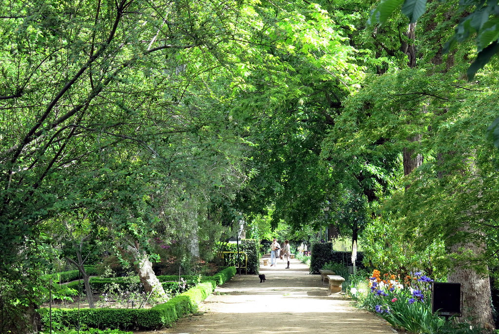 en el Jardín Botánico de Madrid