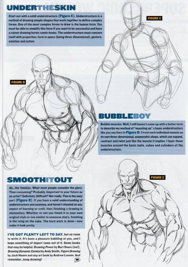 How To Draw Muscles On A Woman - Drawing Art Ideas