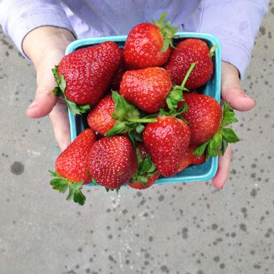 strawberries 2013