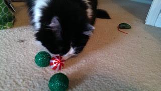 Josie picks the peppermint ball