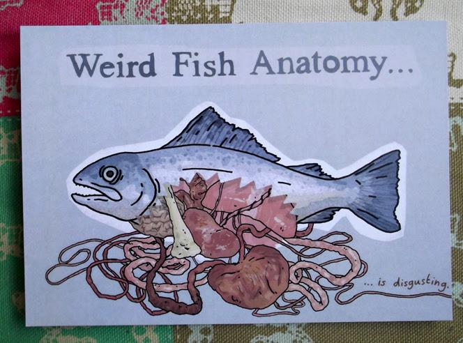 weirdfishanatomy