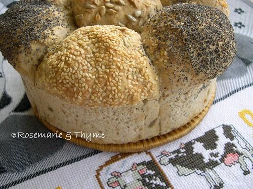 DSCN2055 - pane ai semi per un picnic