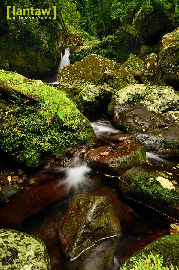 Lush greens at Bukal/Bucal Falls aka Kilangin Falls