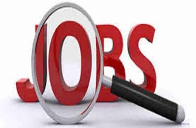 MPPEB Recruitment 2020: कृषि विभाग में 863 पदों पर निकली भर्ती, पात्रता सहित पूरी डिटेल्स यहां पढ़ें