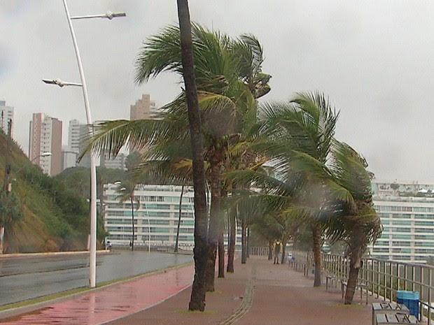 Pista da Avenida Oceânica, na Barra, está molhada (Foto: Reprodução/TV Bahia)
