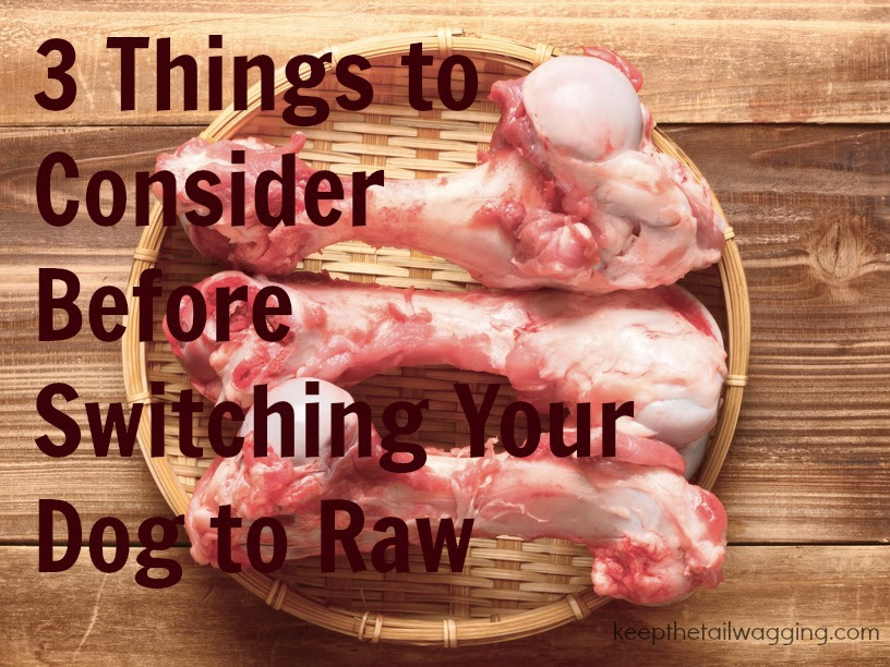 raw feeding feeding your dog raw food dogs information center. Black Bedroom Furniture Sets. Home Design Ideas