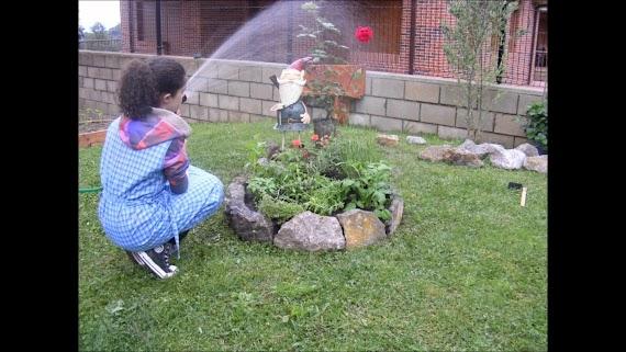 The Best Ideas Para El Jardin De La Casa