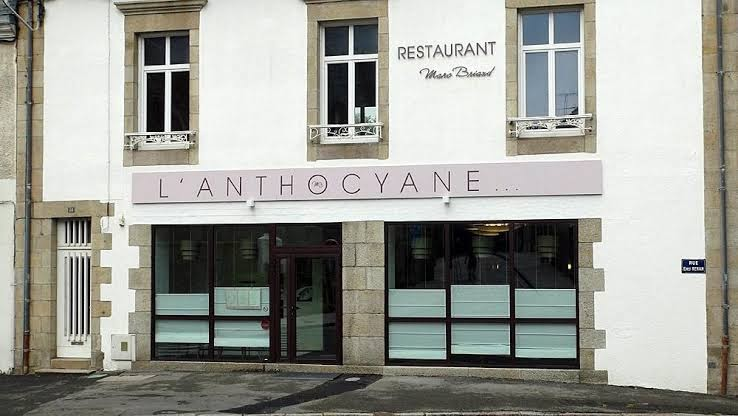 photo du resaurant L'Anthocyane
