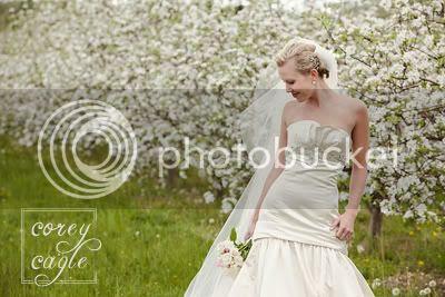 apple orchard bridal session