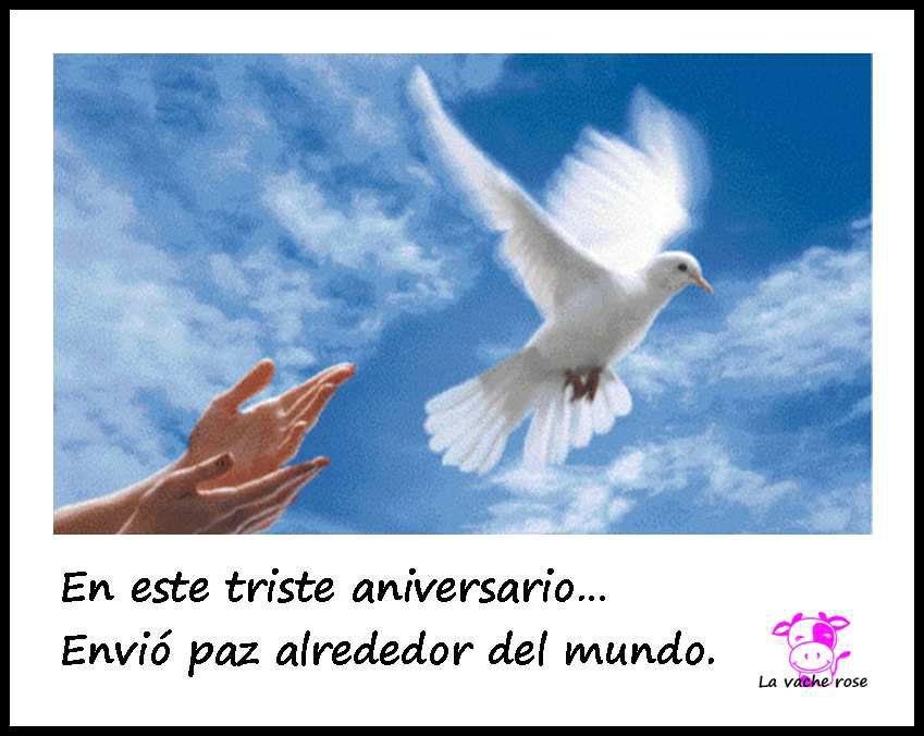 Frase Del Dia Para Paz En El Mundo La Vache Rose Espagnole