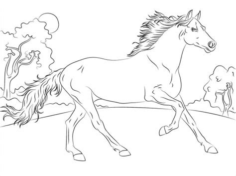 horse coloring pages   document