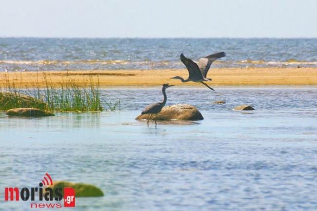 Tι αλλάζει για τις περιοχές Natura