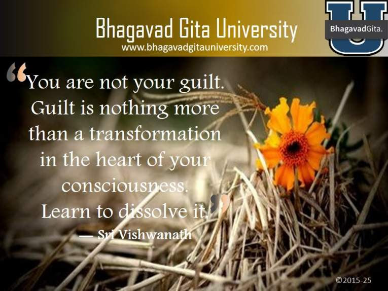 Bhagavad Gita Summary How To Handle Big Mistakes In Your Life