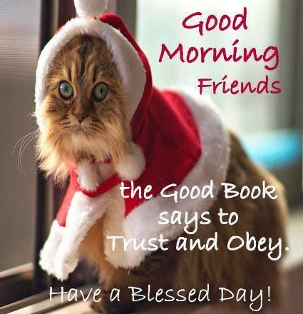 Christmas Good Morning Quote For Friends Pictures Photos And