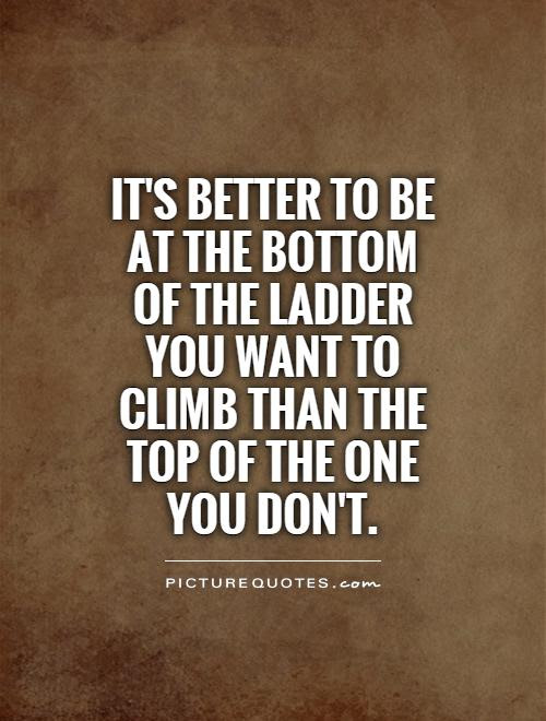 Its Better To Be At The Bottom Of The Ladder You Want To Climb