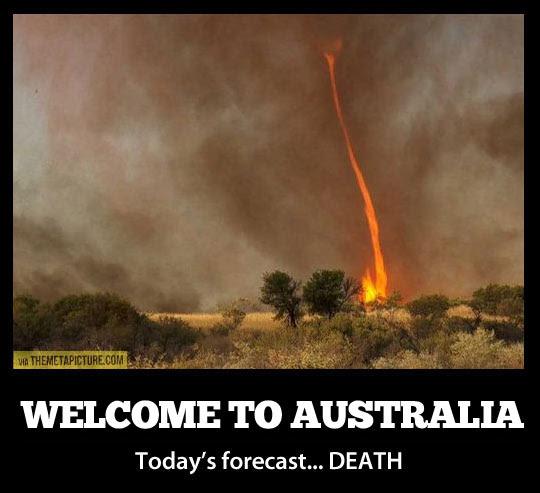 funny Australia forecast tornado1