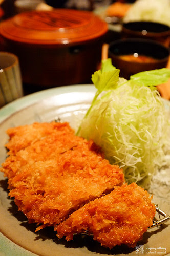 Fuji_X100_lens_12