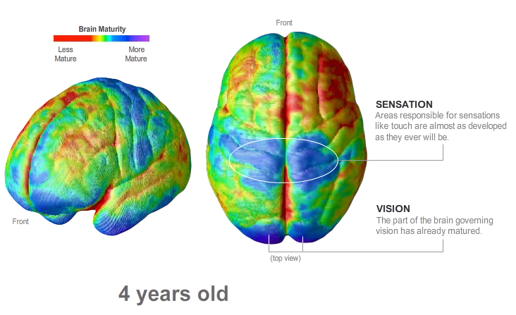 Deric's MindBlog: Training young brains to behave