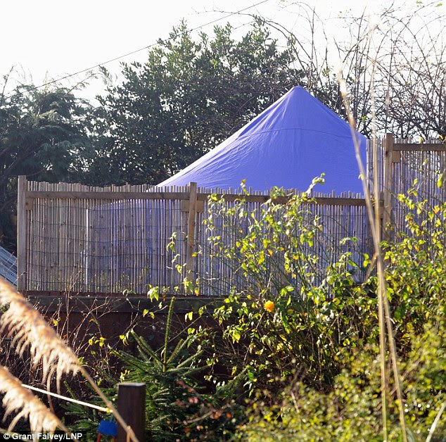 Scene: A blue forensic police tent has been erected in the back garden of the home as investigations continue