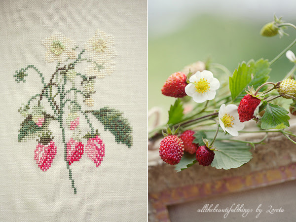 Wild Strawberries (acufactum)