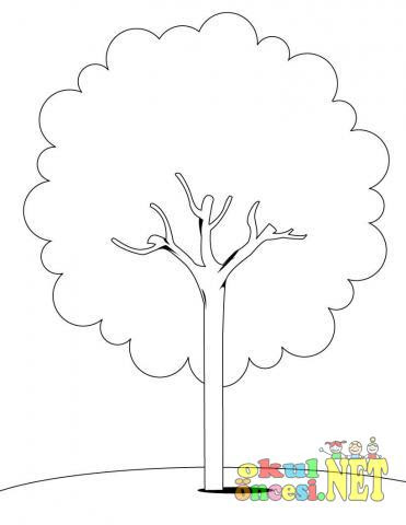 Ağaç Boyama Sayfaları 28 Tane Ağaçlar Axipixde