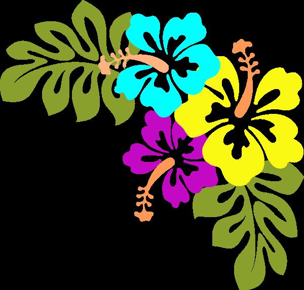 flowers hi