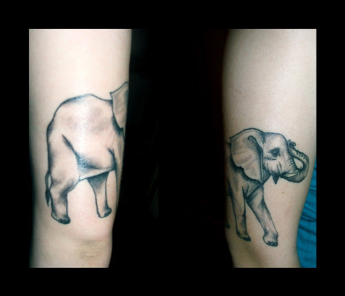 my elephant done by Crow four star in Santa Fe NM