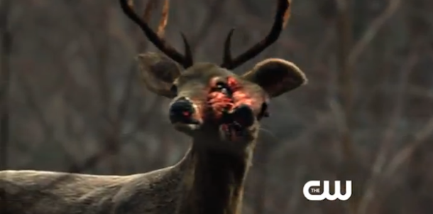 http://www.agentsofguard.com/wp-content/uploads/2014/04/the-100-mutant-deer1.png