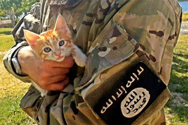 Risultati immagini per ISIS VS CAT MOSUL