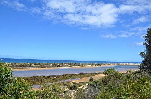 Snowy River Estuary 04