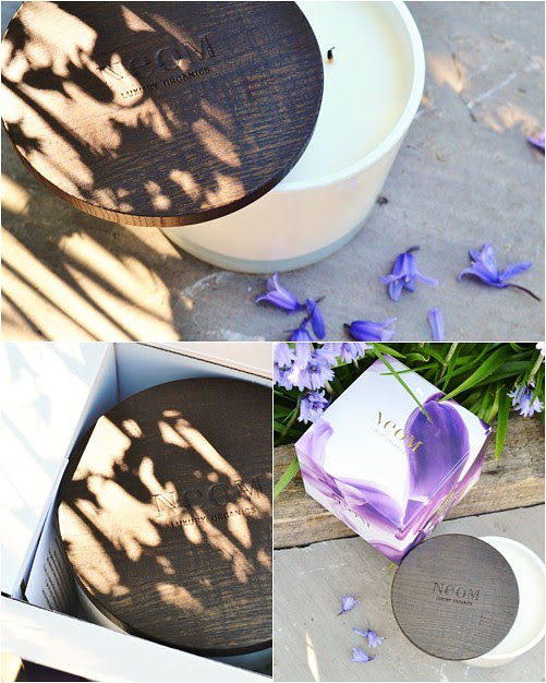 Neon_Enchantment_Home_candle_Review