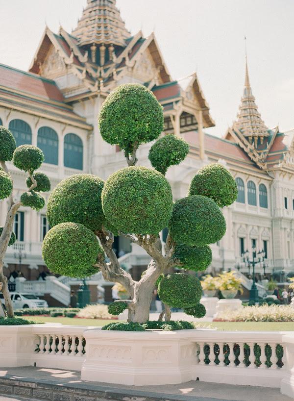 ThailandNov2011blog14.jpg
