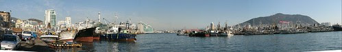 Busan fishing harbor and Yeongdo