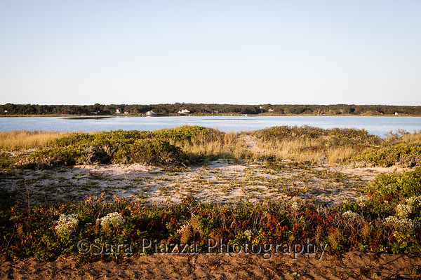 Edgartown News, Beach Road, Our Lady, Star of the Sea;