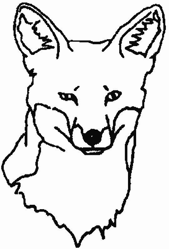 Dibujos Para Colorear Zorros Imágenes Animadas Gifs Y