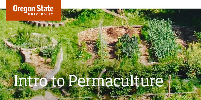 permaculture banner