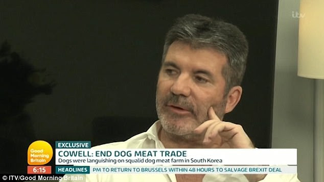 Heartbreak: Simon Cowell came close to breaking down on Tuesday's Good Morning Britain, when he discussed the devastating dog meat farming trade in South Korea