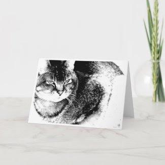 Cat Greeting Card card