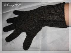 fingerhandschuhe2009.2b