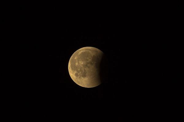 ca79743a0e Eclissi di Luna del 16 luglio 2019: uno spettacolo da non perdere!